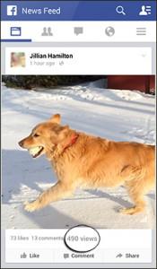 facebookvideos