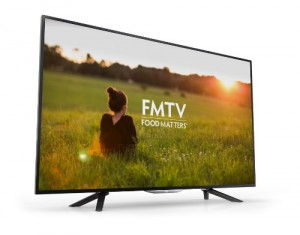 Float Left Interactive fmtv roku